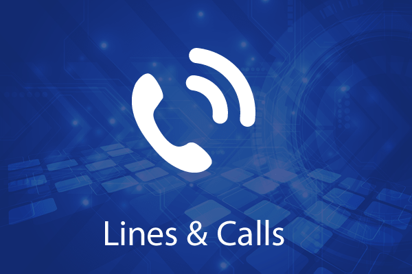 LINES AND CALLS FOR BUSINESS HOSTED VOICE